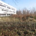 Klimagarten vor den 1. Arbeiten