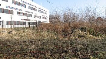 Klimagarten