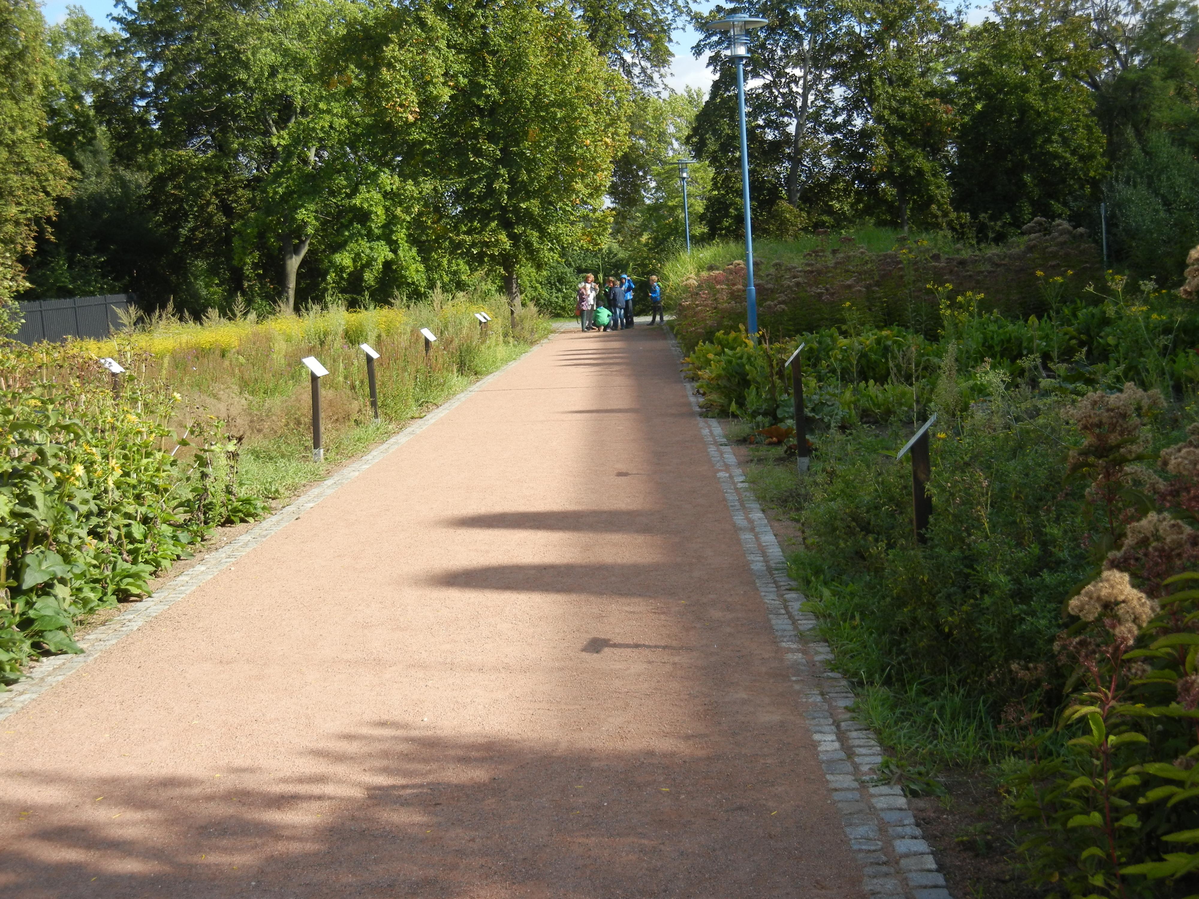 Blog | Klimagarten Halle